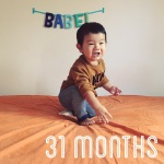 31-months-old_38160766374_o
