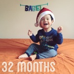 babel-monthly-32-months_24972764467_o