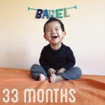 babel-monthly-33-months_25136846187_o