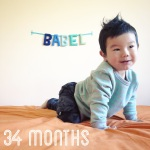 babel-monthly-34-months_40909334181_o