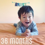 babel-monthly-36-months_41766274201_o