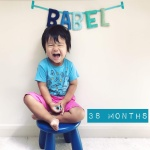babel-monthly-38-months_43529237862_o