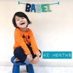 babel-monthly-42-months_31692162738_o