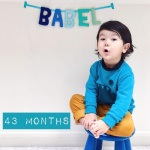 babel-monthly-43-months_32223130758_o