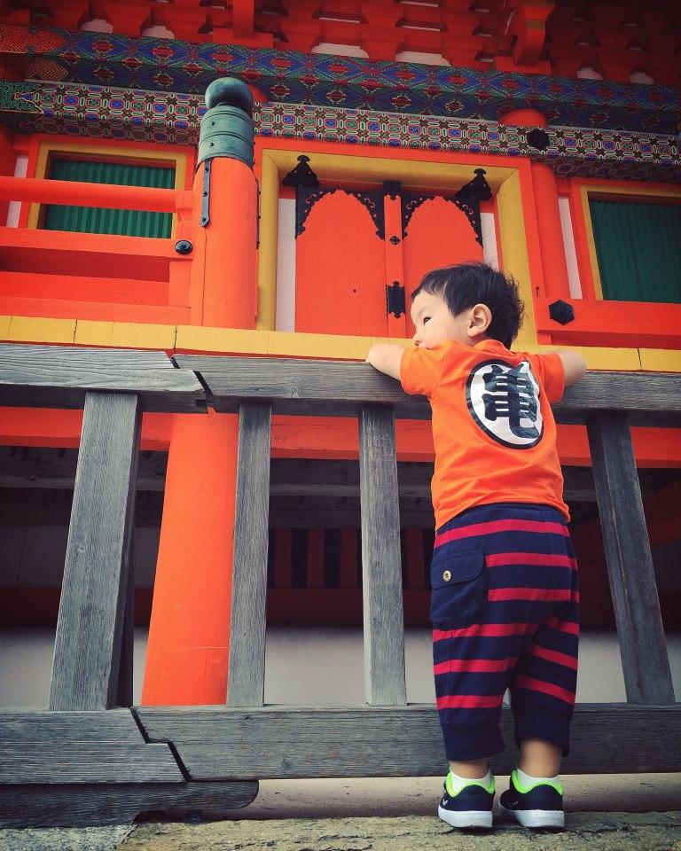 kiyomizudera_34643408556_o