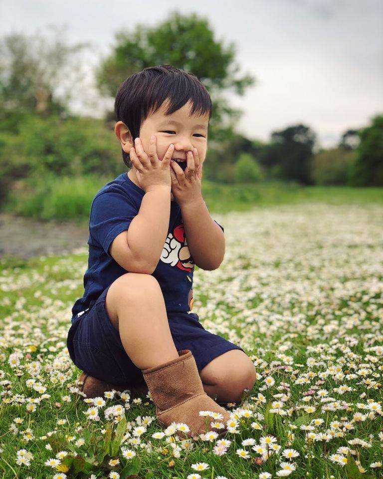 spring-flowers_40693273690_o