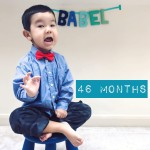 babel-monthly-46-months