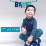 babel-monthly-47-months