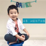 babel-monthly-48-months